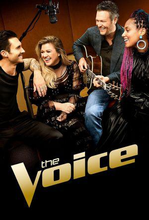 The Voice (season 17)